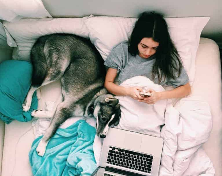 Girl using mobile phone and laptop while laying in bed with a dog with quarantine fatigue